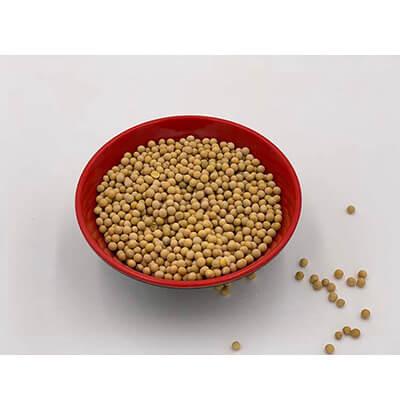 优质散装黄豆 500g